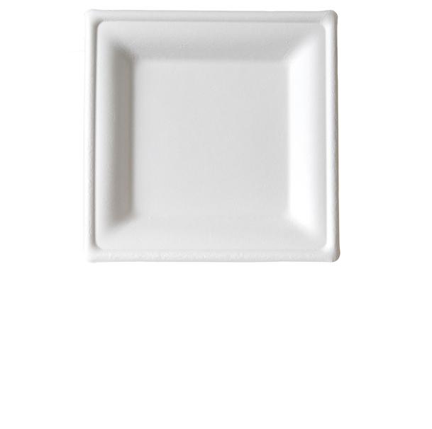 Small Square Sugarcane Plate  sc 1 th 224 & Small Square Sugarcane Plate EP-P021